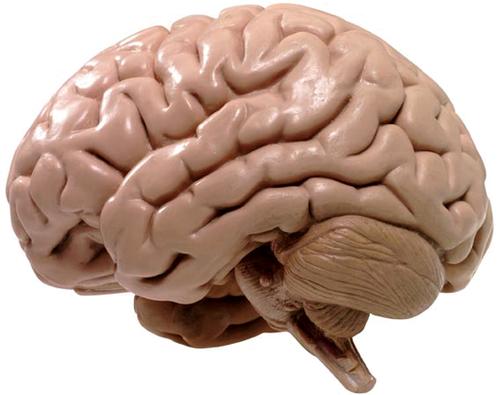 vitamins that boost memory