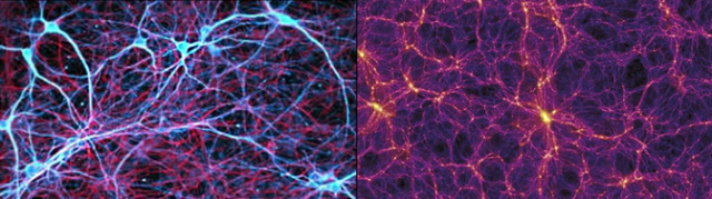 Neural vs Galactic Networks. Brain cells on the left and Intergalactic structure of the universe on the right.